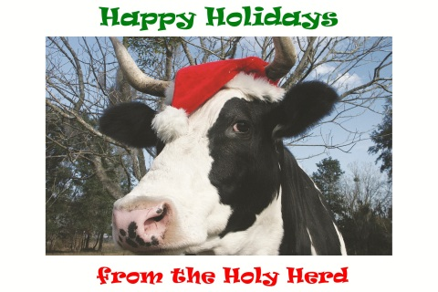 Happy Holidays from the Holy Herd