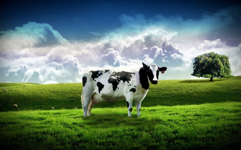 Happy Earth Day from Save the cow