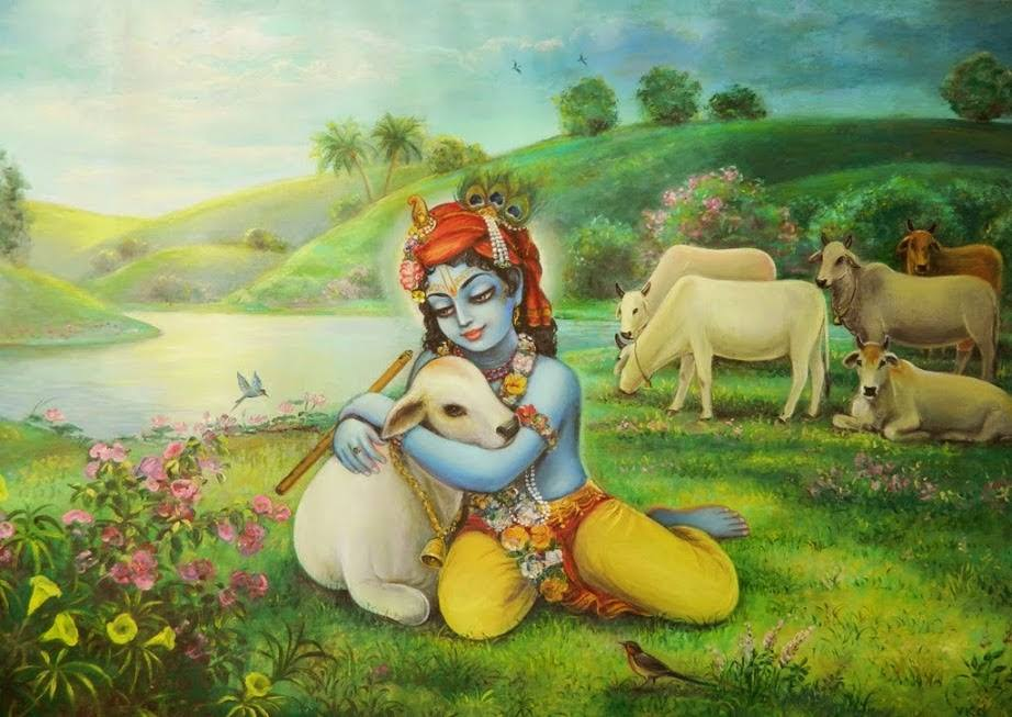 Cows And Krishna