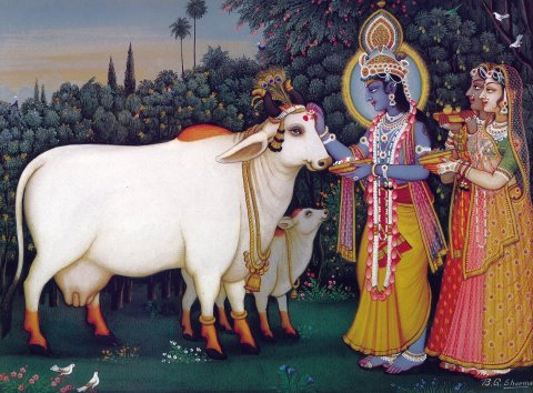 Radha Krishna with Cows